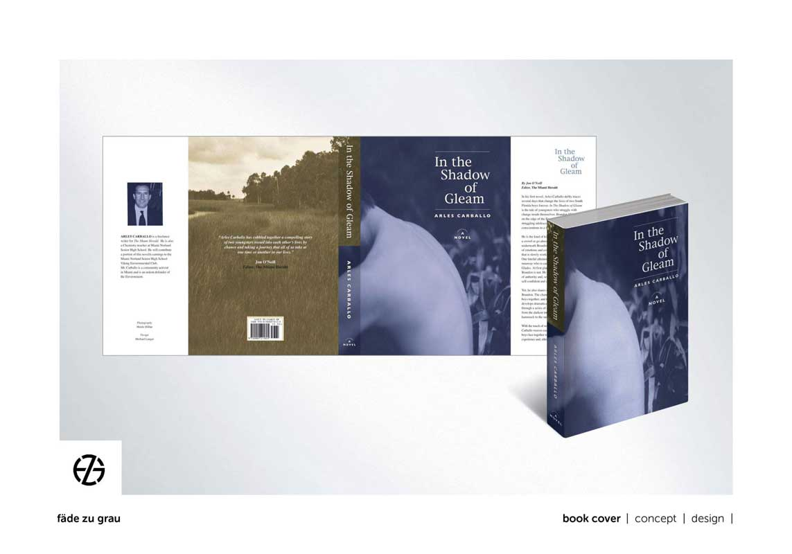 """graphic design book cover for """"in the shadow of gleam"""""""