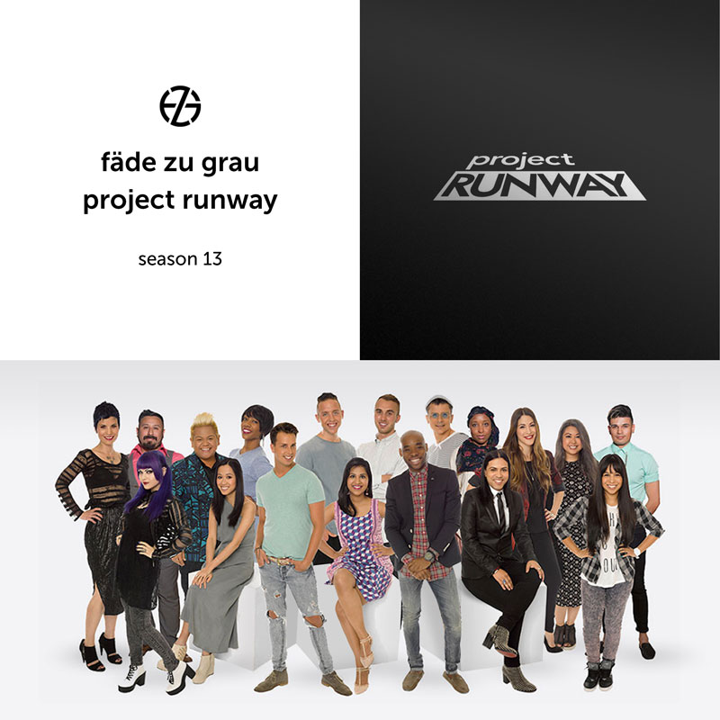 group image of the cast of project runway season 13
